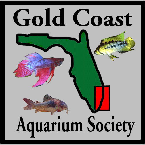 Gold Coast Aquarium Society of South Florida